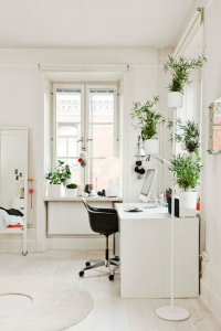 White Office with Plants