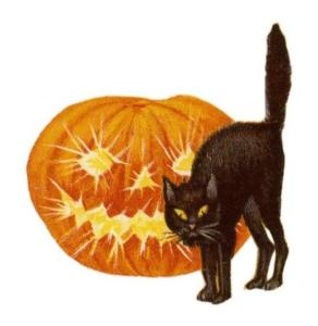 Jack O' Lantern and Black Cat