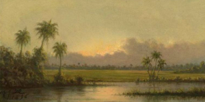 Palm Trees Florida Heade