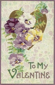 To My Valentine Pansies